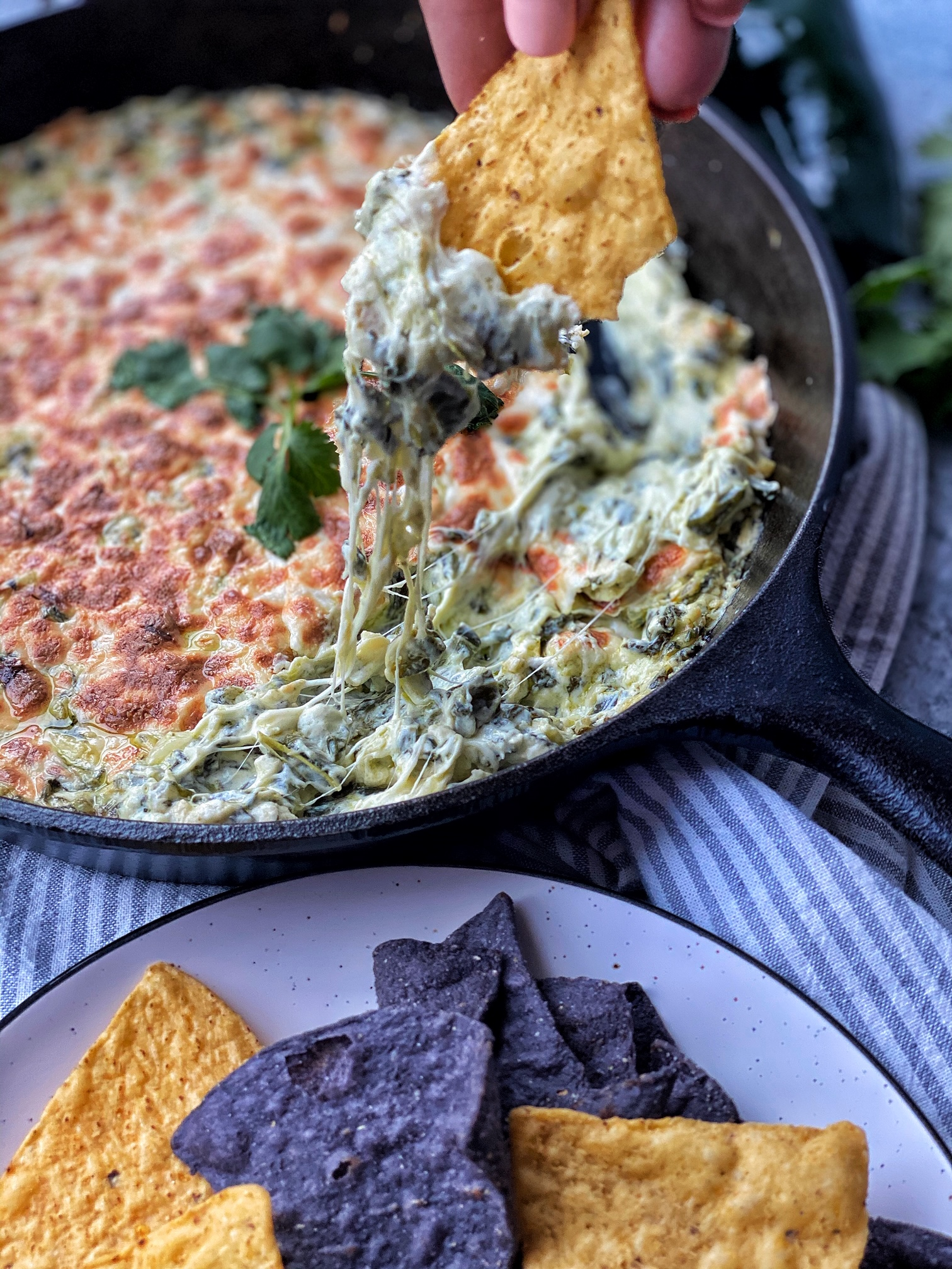 Spinach Poblano Dip in a cast iron with a tortilla chip with dip. Tortilla chips on the side.