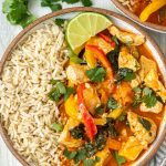 Bowl of lemongrass thai curry with rice